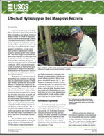 Effects of hydrology on red mangrove recruits