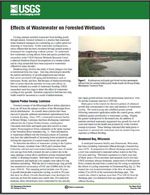 Effects of wastewater on forested wetlands