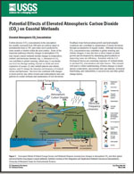 Potential effects of elevated atmospheric carbon dioxide (CO2) on coastal wetlands