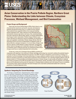 Avian conservation in the Prairie Pothole Region, Northern Great Plains-Understanding the links between climate, ecosystem processes, wetland management, and bird communities